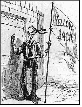 Yellow-Jack